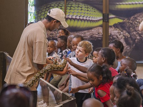 A man showing some children a Snake and letting them touch it. Children are enjoying the Le Bonheur reptile farm