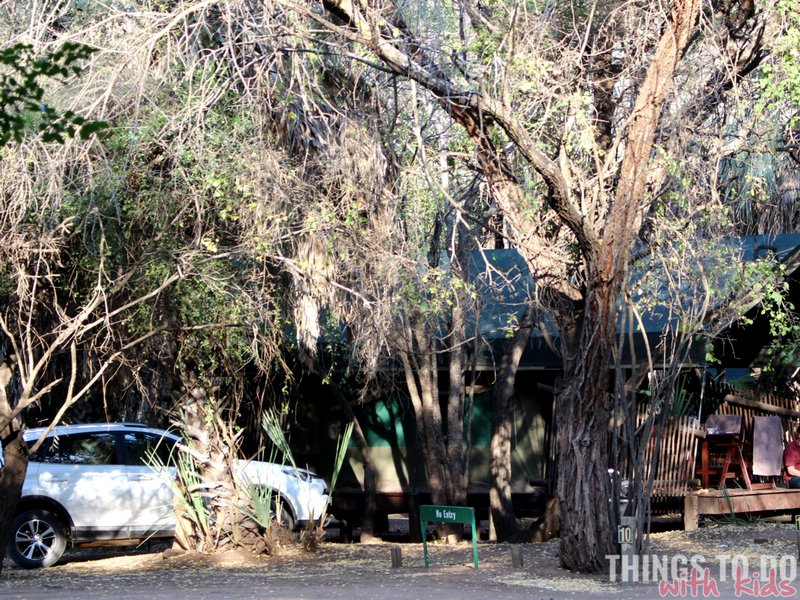 Kruger Tented camps| Family Getaways| Things to do with kids