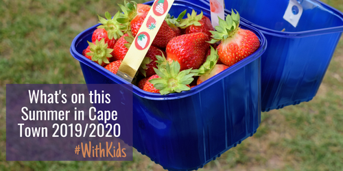 What's on for families in Cape Town this Summer 2019/2020