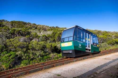 A green funicular going up and down the mpuntain at cape point.  Cape point is showing off it's green scenery before its spectacular views at the top