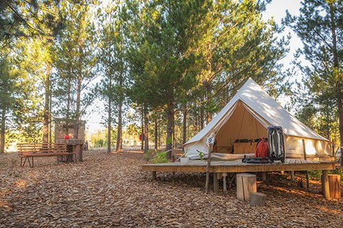 Cherry Glamping | Elgin | Things to do With Kids