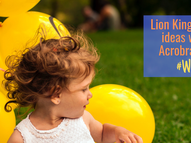 The Lion King party ideas with Acrobranch to make you go wild!