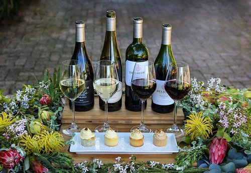 Delheim Wines | Cape Town | Wine | Things to do With Kids