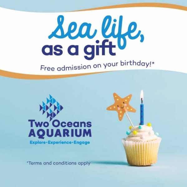 Two Oceans Aquarium and family restaurant