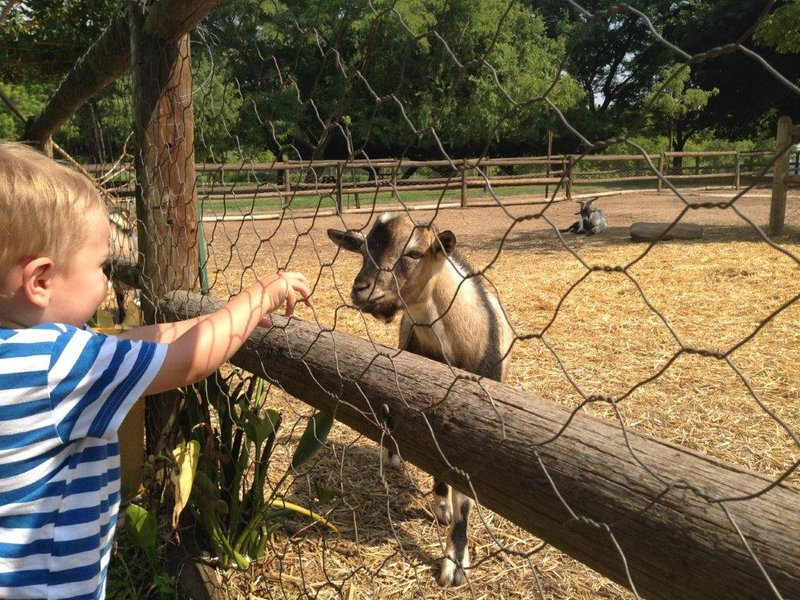 Near Franschhoek Valley | Getaways & Excursions | Things to do with Kids