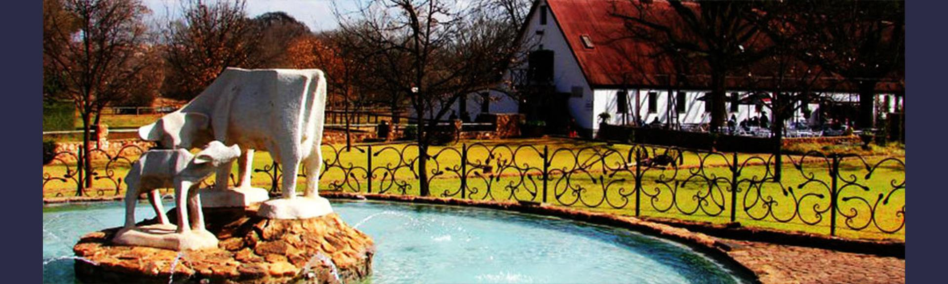 Irene Dairy Farm - Kids Party Venue + Restaurant - Centurion