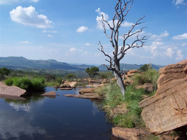 Picnic Spots | Pretoria | Things to do with Kids