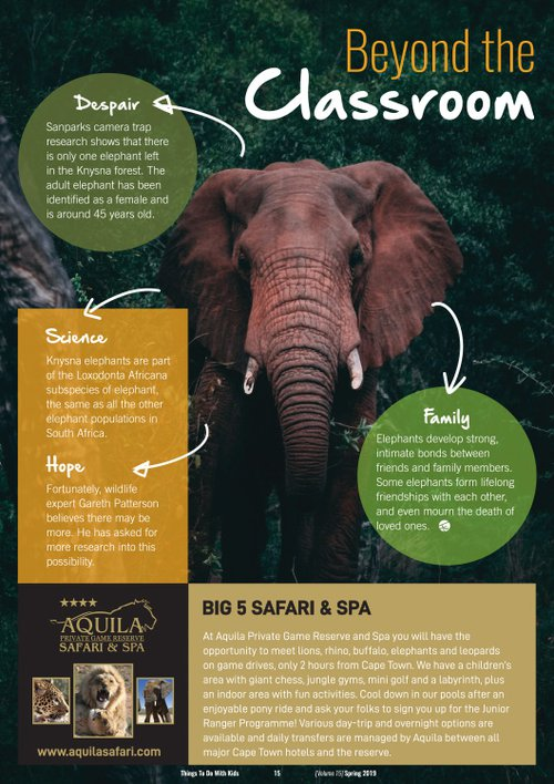 Beyond the classroom: Learn about Elephants | Blog | Things to do With Kids Spring magazine