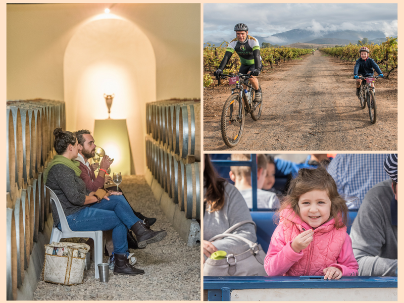 Robertson Family Friendly Wine Farms + Festivals| Things to do with kids