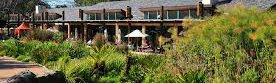 Moyo Kirstenbosch | Cape Town | Child Friendly Restaurant