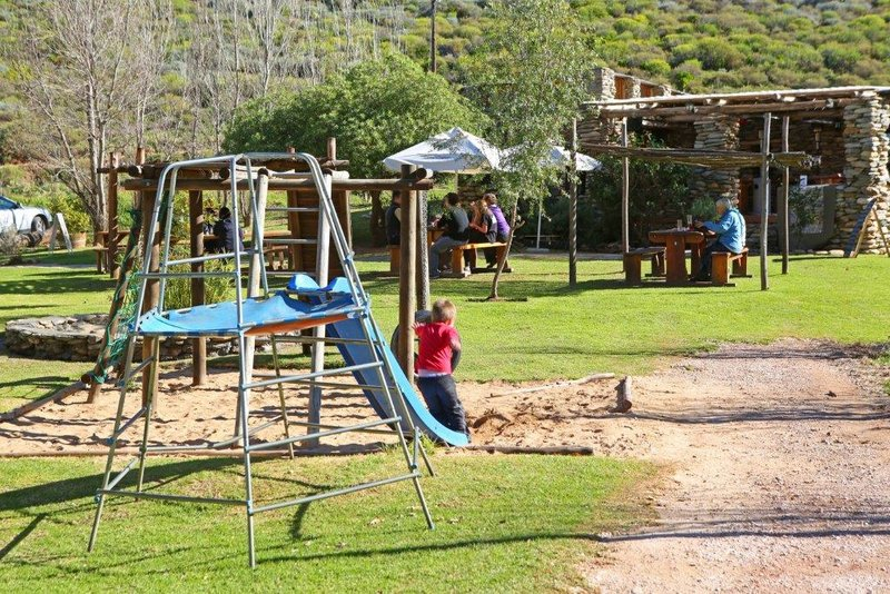 Robertson Activities| Family Getaways + Excursions | Things to do With Kids