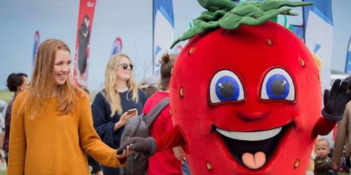 Strawberry Festival 2019 | George | Event and activities