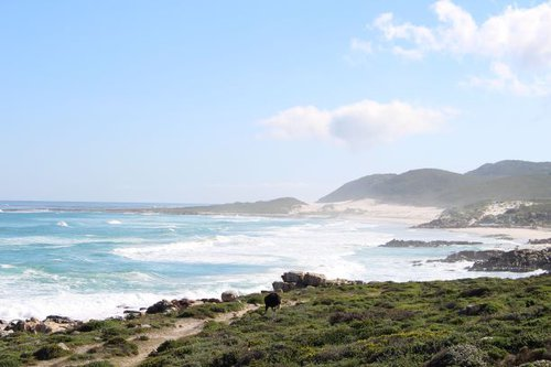 Rediscover the enchantment of Cape Point | Blog | things to do With Kids