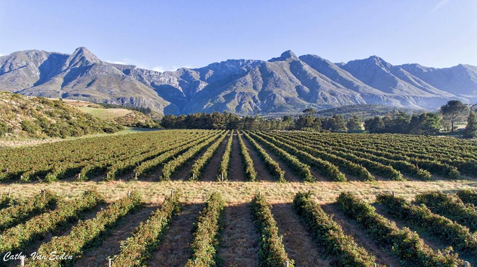 Enter here to win a Farm Stay at Wildebraam Berry Estate in Swellendam