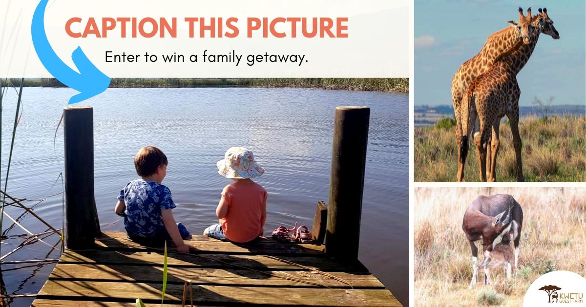 Win a family getaway to Kwetu Guest Farm, Swellendam